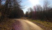Trail On foot VIEUX-MOULIN - en forêt de Compiègne_23_la Grotte des Ramoneurs_le Mont Berny - Photo 74