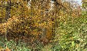 Randonnée Marche Marchin - Grand Marchin louis - Photo 15
