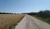 Randonnée Marche Dalhem - dalhem grand tour - Photo 37