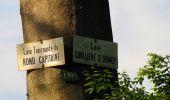Randonnée Marche COYOLLES - en forêt de Retz_78_les rayons du Rond Capitaine - Photo 82