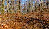 Randonnée A pied VILLERS-COTTERETS - le GR11A  dans la Forêt de Retz  - Photo 95