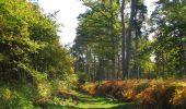 Randonnée Marche SAINT-JEAN-AUX-BOIS - en forêt de Compiègne_21_la Muette_les Clavières_la Brévière - Photo 61