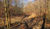 Trail Walk PIERREFONDS - en forêt de Compiègne_24_Tournantes sur le Voliard et sur la Fortelle_chaussée Brunehaut - Photo 58