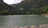 Trail Walk METZERAL - Steinabruck - Le Hohneck et ses 3 lacs Fischboedle, Altenweiher et Schiessrothried - Photo 54