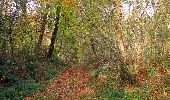 Randonnée Marche SAINT-JEAN-AUX-BOIS - en forêt de Compiègne_19_le Puits d'Antin_les Mares St-Louis_La Muette - Photo 86