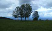 Trail Walk SENTHEIM - Sentheim Rossberg - Photo 13