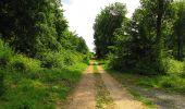 Randonnée Marche COYOLLES - en forêt de Retz_78_les rayons du Rond Capitaine - Photo 1