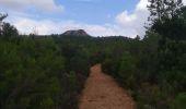 Randonnée Marche ROQUEBRUNE-SUR-ARGENS - La Lieutenante - Photo 1