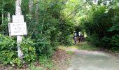 Trail Walk RIVIERE-SALEE - JOUBADIÈRE - MORNE CONSTANT - PAGERIE - Photo 9