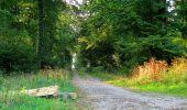 Trail Walk DAMPLEUX - en forêt de Retz_80_sur la Route Tortue et la Route Droite - Photo 3