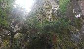Randonnée Marche MUHLBACH-SUR-BRUCHE - Le Jardin des Fées par la cascade de Soulzbach - Photo 42
