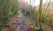 Randonnée A pied VILLERS-COTTERETS - le GR11A  dans la Forêt de Retz  - Photo 139