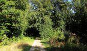 Trail Walk DAMPLEUX - en forêt de Retz_80_sur la Route Tortue et la Route Droite - Photo 116