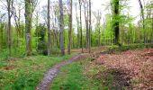 Randonnée A pied VILLERS-COTTERETS - le GR11A  dans la Forêt de Retz  - Photo 37