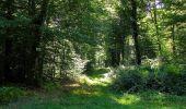 Trail Walk DAMPLEUX - en forêt de Retz_80_sur la Route Tortue et la Route Droite - Photo 216