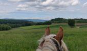 Trail Horseback riding MOLLKIRCH - 2019-05-26 Balade Fête des mères - Photo 5