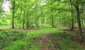 Randonnée A pied VILLERS-COTTERETS - le GR11A  dans la Forêt de Retz  - Photo 91