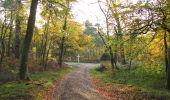 Randonnée Marche SAINT-JEAN-AUX-BOIS - en forêt de Compiègne_19_le Puits d'Antin_les Mares St-Louis_La Muette - Photo 70