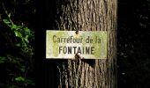 Trail Walk DAMPLEUX - en forêt de Retz_80_sur la Route Tortue et la Route Droite - Photo 215