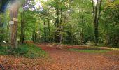 Randonnée A pied VILLERS-COTTERETS - le GR11A  dans la Forêt de Retz  - Photo 148