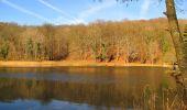 Trail On foot VIEUX-MOULIN - en forêt de Compiègne_23_la Grotte des Ramoneurs_le Mont Berny - Photo 39