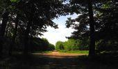 Randonnée Marche COYOLLES - en forêt de Retz_78_les rayons du Rond Capitaine - Photo 41