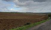 Trail Walk Andenne - sclaigneaux 1 - Photo 1