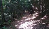 Trail Walk SENTHEIM - Marcher au marché - Photo 8