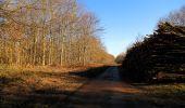 Trail Walk RETHEUIL - en forêt de Retz_76_dans les forêts de Retz et de Compiègne - Photo 79