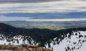 Randonnée Raquettes à neige DIVONNE-LES-BAINS - La Dole alt 1676m en raquette - Photo 9