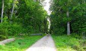 Randonnée Marche COYOLLES - en forêt de Retz_78_les rayons du Rond Capitaine - Photo 74