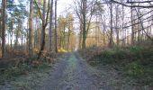 Trail Walk SAINT-JEAN-AUX-BOIS - en forêt de Compiègne_33_12_2019_les Tournantes de l'étang Saint-Jean et des Prés Saint-Jean - Photo 170
