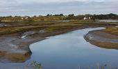 Randonnée Marche MESQUER - la pointe de Merquel à marée basse - Photo 3