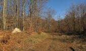 Trail Walk PIERREFONDS - en forêt de Compiègne_24_Tournantes sur le Voliard et sur la Fortelle_chaussée Brunehaut - Photo 144