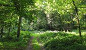 Randonnée Marche HARAMONT - en forêt de Retz_79_08_2019_vers Taillefontaine et Retheuil par les lisières - Photo 56