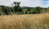Randonnée Marche Yvoir - Durnal / 2020-07-19 - Photo 1