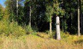 Trail Walk DAMPLEUX - en forêt de Retz_80_sur la Route Tortue et la Route Droite - Photo 145