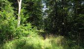 Randonnée Marche LACROIX-SAINT-OUEN - en forêt de Compiègne_35_la Croix Saint-Sauveur_le Ru du Goderu - Photo 3