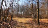 Trail Walk PIERREFONDS - en forêt de Compiègne_24_Tournantes sur le Voliard et sur la Fortelle_chaussée Brunehaut - Photo 132