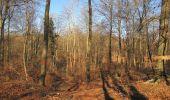 Trail Walk PIERREFONDS - en forêt de Compiègne_24_Tournantes sur le Voliard et sur la Fortelle_chaussée Brunehaut - Photo 44