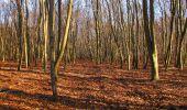 Trail On foot VIEUX-MOULIN - en forêt de Compiègne_23_la Grotte des Ramoneurs_le Mont Berny - Photo 105