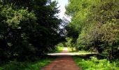 Randonnée Marche HARAMONT - en forêt de Retz_79_08_2019_vers Taillefontaine et Retheuil par les lisières - Photo 125