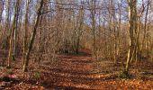 Trail On foot VIEUX-MOULIN - en forêt de Compiègne_23_la Grotte des Ramoneurs_le Mont Berny - Photo 82