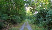 Trail Walk DAMPLEUX - en forêt de Retz_80_sur la Route Tortue et la Route Droite - Photo 54