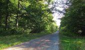 Trail Walk DAMPLEUX - en forêt de Retz_80_sur la Route Tortue et la Route Droite - Photo 218