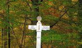 Trail Walk SAINT-JEAN-AUX-BOIS - en forêt de Compiègne_19_le Puits d'Antin_les Mares St-Louis_La Muette - Photo 130