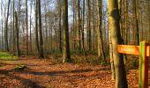 Randonnée A pied VILLERS-COTTERETS - le GR11A  dans la Forêt de Retz  - Photo 46