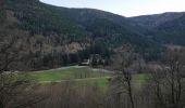 Trail Walk METZERAL - le lac Fichboedlé - Photo 2