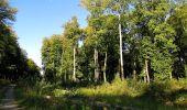 Trail Walk DAMPLEUX - en forêt de Retz_80_sur la Route Tortue et la Route Droite - Photo 126