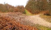 Randonnée A pied VILLERS-COTTERETS - le GR11A  dans la Forêt de Retz  - Photo 1